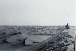 ALGERIE 1955 / Soldat Dans Le Désert - Guerre, Militaire