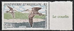 1996 St. Pierre And Miquelon Migratory Birds: Long-billed Curlew Stamp (** / MNH / UMM) - Other