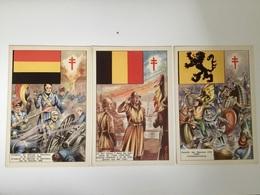 BELGIQUE  RÉVOLUTION ABDICATION BATAILLE.....Evolution Des Drapeaux De L'actuelle Belgique 10 CPA - History