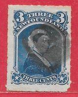 Terre-Neuve N°33 3c Bleu 1876-79 O - 1865-1902