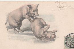 CPA Animal Humanisé Position Humaine Cochon Glissade Sur La Glace Porc Pig Viennoise Illustrateur (2 Scans) - Cochons