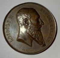 Médaille En Bronze. Léopold II Roi Des Belges. Exposition Nationale 1880. Ch. Wiener. 50mm - Royaux / De Noblesse