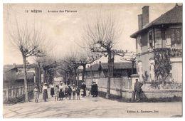 Mezos - Avenue Des Platanes /P160/ - Francia