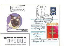 Enveloppe 1er Jour 1992 / BIELORUSSIE / Chat /, Timbre Croix Religion - Hauskatzen