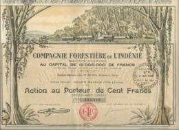COMPAGNIE FORESTIERE DE L'INDENIE-GRAND BASSAM -COTE D'IVOIRE - 1928 - Afrique