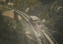 Suisse. Chemin De Fer Du Righi. Photogravure Fin XIXe. - Estampas & Grabados