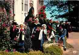 Folklore - Costumes - Vendée - Les Joyeux Vendéens Du Boupère - CPM - Voir Scans Recto-Verso - Costumes