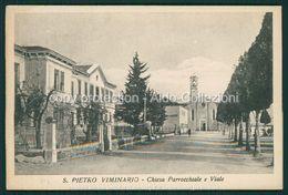 Padova San Pietro Viminario Viale Chiesa Parrocchiale FP P/553 - Padova (Padua)