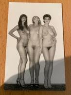 Akt Foto DDR Aktfoto Erotik Photo GDR H. Gross - Artistic Nudes (1960-…)
