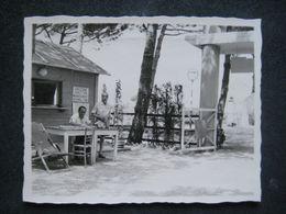 1959 CAMPING MARINA DI CECINA DIREZIONE DIRECTION MANAGEMENT - Orte