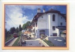 "Suisse (vaud) Lally Sur Blonay : Hotel Restaurant ""les Sapins"" - Accès Train & Voiture (cp Vierge) - VD Vaud"