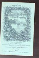 (Autriche) Gmunden Am Traunsee Und Dessen Umgebung  (ed 1912)   (M0383) - Austria