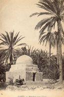 CPA / ALGERIE MAGHREB / Gabès Marabout Dans L'oasis - Argelia