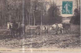Dépt 60 - LIANCOURT - École De L'Île-de-France - Travaux Agricoles - (attelage De Chevaux) - Liancourt