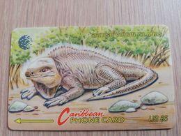 BRITSCH VIRGIN ISLANDS  US$ 5   BVI-23A   LEGUAAN        23CBVA     Fine Used Card   ** 2660** - Vierges (îles)