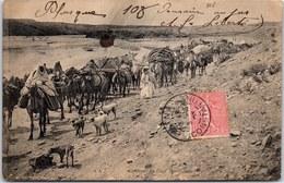 TUNISIE - Caravane Du Caid Ben Ganah - Tunisie