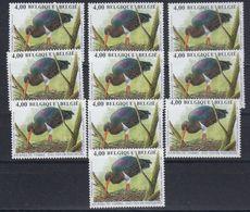 Belgie 2005 Buzin, Zwarte Ooievaar 1w (10x) ** Mnh (48771) Face 40.00 Euro @ 65% - 1985-.. Oiseaux (Buzin)