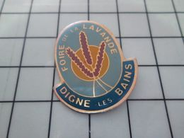 415c Pin's Pins / Beau Et Rare / THEME : VILLES / DIGNE LES BAINS FOIRE A LA LAVANDE - Cities
