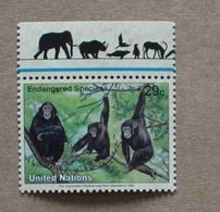 NY94-01 : Nations-Unies (New-York) / Protection De La Nature - Pan Troglodytes (Chimpanzé) - Unused Stamps