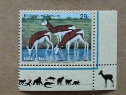 NY94-01 : Nations-Unies (New-York) / Protection De La Nature - Gazelle Dama (Nanger Dama) - Unused Stamps