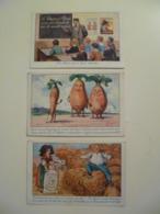 Lot De 3 Cartes Postales Anciennes Publicitaires / Potasse D'Alsace - Advertising
