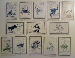 CPA / Lot De 14 Cartes Postales Anciennes Publicitaires / Les Animaux De GIBBS - Reclame