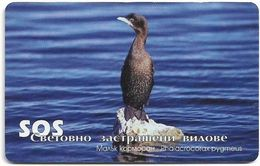 Bulgaria - Mobika (chip) - Cormorant Bird - Exp. 12.2003, 50Units, 40.000ex, Used - Bulgaria