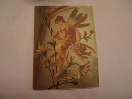 Chromo Doré Calendrier 1883 Femme Papillon Restaurant Maison Boulon  Frais De Port Offert - Kalender