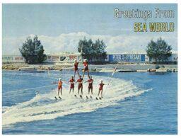 (D 18) Australia - QLD - Sea World Water Ski / Ski Nautique - Ski Náutico