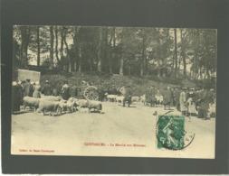 50 Coutances Le Marché Aux Moutons édit. Bazar Coutançais  Brebis , Animée - Coutances