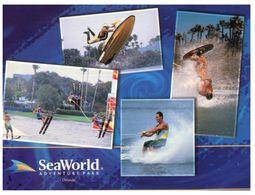 (D 20) Australia - QLD - Sea World Adventure Park - Water Ski Etc - Ski Náutico