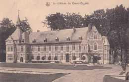Groot-Bijgaarden - Grand-Bigard - Le Château - Pas Circulé - Nels - Dilbeek - TBE - Dilbeek