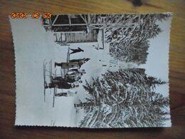 L'Auvergne. Le Lioran. Station De Sports D'hiver. Le Remonte Pente. BOS 303 - France