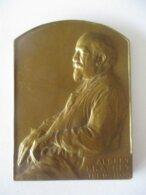 Albert Brachet - 1869-1930 - Ancien Doyen De La Faculté De Médecine De L'ULB - Médaille Par Devreese - Professionnels / De Société