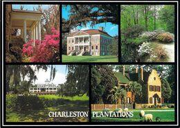 Charleston - Plantations - Multivues - Charleston