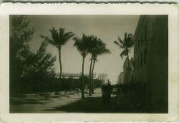 AFRICA - SOMALIA - MERCA - RPPC POSTCARD - 1930s ( BG8656 ) - Somalia
