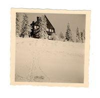 Photo Feldberg Forêt Noire Allemagne Neige Chalet Sapin Hiver Pace Montagne Nature 1950 6x6 Cm - Luoghi