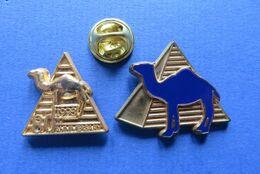 2 Pin's, CAMEL INTERNATIONAL,CAMEAU,TABAC,CIGARETTES - Marques