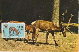 Bulgarie Carte Maximum 1967 Cerf 1488 - Briefe U. Dokumente