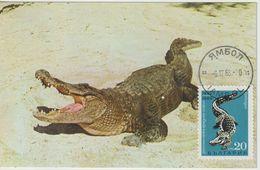 Bulgarie Carte Maximum 1968 Crocodile 1607 - Briefe U. Dokumente