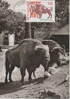 Bulgarie Carte Maximum 1973 Bison 2012 - Briefe U. Dokumente