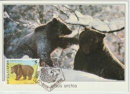 Bulgarie Carte Maximum 1988 Ours Brun 3205 - Briefe U. Dokumente