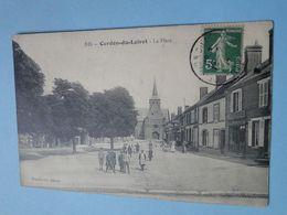CERDON  (Loiret) -- La Place - ANIMEE - Autres Communes