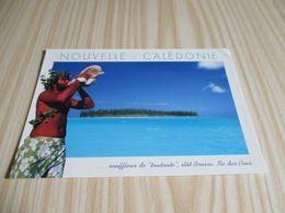 """Ilot Brosse -Ile Des Pins (Nouvelle-Calédonie).Souffleur De """" Toutoute """". - Nuova Caledonia"""