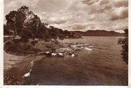 KISENYI - Le Lac Kivu - Ruanda-Burundi
