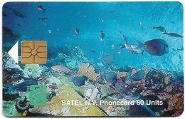 Saba (Antilles Netherlands) - Satel (Chip) - Marine Life, Gem1A Black, 10.1996, 60U, 2.000ex, Used - Antille (Olandesi)