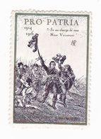 Vignette Militaire Patriotique - Pro Patria - Militario