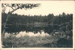 """Reihwiesen Rejvíz Partie Gasthof  Scholtesei """"Sommerfrische Reihwiesen"""" 1930 - Repubblica Ceca"""
