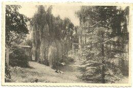 PUTTE GRASHEIDE  -  Pensionaat Van Der Borght  -  Hof / Jardin - Putte