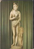 C. Postale - Roma - Museo Capitolino - Venere Capitolina - Circa 1960 - Non Circulee - A1RR2 - Musées